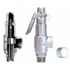Stainless Safety Relief Valve