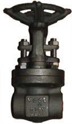 12111 and 12141: Forged Gate Valve Class 800