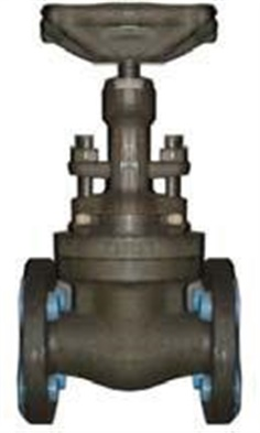 59851MM FORGED GATE VALVE; CLASS 800