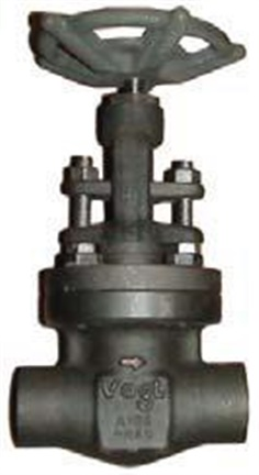SW12141: Forged Gate Valve Class 800 (PN130) Welded
