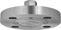 DJ Diaphragm Seal Direct flanged flushed type
