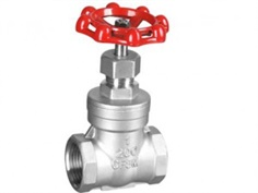 GATE VALVE SUS316 200PSI SCREWED