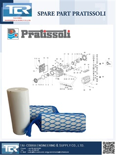 Pratissoli Pump Spair Part