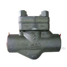 API 602 Piston Check Valve,F22,2 Inch,1500LB