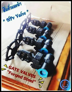 A105 Forged steel globe valve ,gate valve,check valve