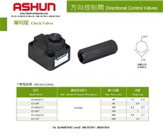ASHUN : CHECK VALVES