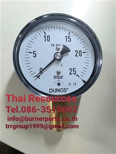 """DUNGS Pressure Gauge Range: 0-25 mbar Connections: 1/2""""#DUNGS Pressure Gauge Range: 0-4 bar Connections: 1/2"""""""