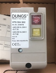 Dungs VPS504 S02