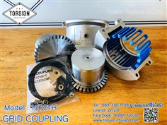 Grid Coupling Model : 1070TH