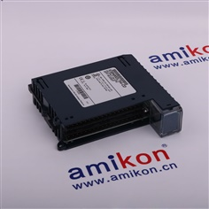 GE DS200SLCCG3A Email: sales3@amikon.cn