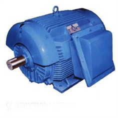 SPECTRUM THREE PHASE SC INDUCTION MOTORS