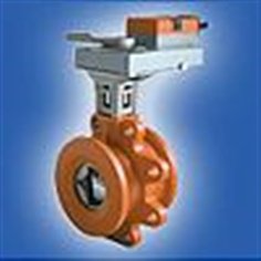 Steam valve and Actuator