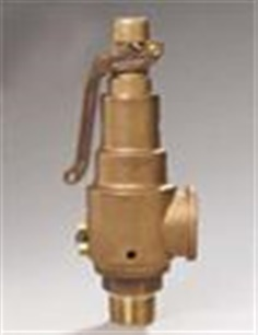 Safety & Relief Valves