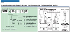 RIKEN Motor-Driven Hydraulic Pump SMP-3012 Series
