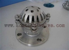 Cast Steel/Stainless steel Foot Valve
