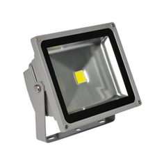 Flood Light L&E # FLS50-50LED