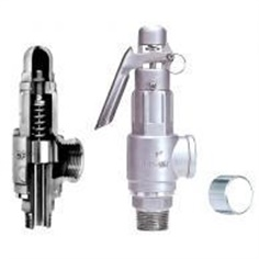 Safety valve Stainless Steel Body, CF8M- N8S_N8LS