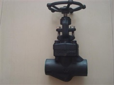 GLOBE VALVE FORGED STEEL CLASS800