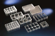 Thermo Scientific Nunclon Multidishes with Coated Surfaces
