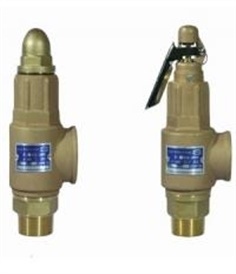 Bronze Safety Valve