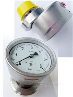 BAUMER PRESSURE GAUGES (เกจวัดแรงดัน) 100MM, SUS 316, RANG 0+6 bar , PT 1/2""