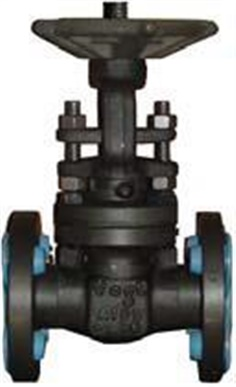 363: Forged Gate Valve Class 300