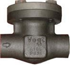 SW701: Forged Check Valve Class 800 (PN130)