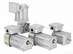 Mighty gear motor