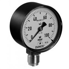 """DUNGS"" Pressure gauge"