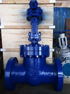 A217 WC6 Gate Valve, 10 Inch, 600 LB, Flanged Ends, Trim 8#