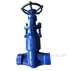 API602 High Pressure Seal Globe Valve, DN20, Class 2500,SW End