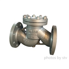 DIN Cast Steel Swing Check ,DN350,PN16,Flange End