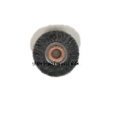 Circular wheel brushes CB
