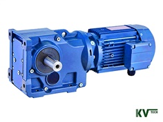Helical Bevel Gear Motors