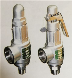 Safety Valve/Safety Relief Valve-Stainless Steel/SUS Safety Valve