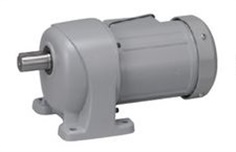 NISSEI Geared Motor G3L22Nxxx-MM02TxxNB2 Series