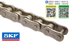 Roller Chain BS/ISO SKF