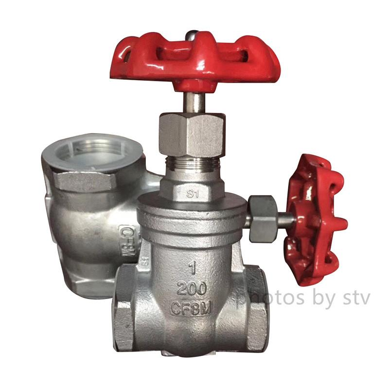 1Inch 316 NPT Threaded Stainless Steel Gate Valves