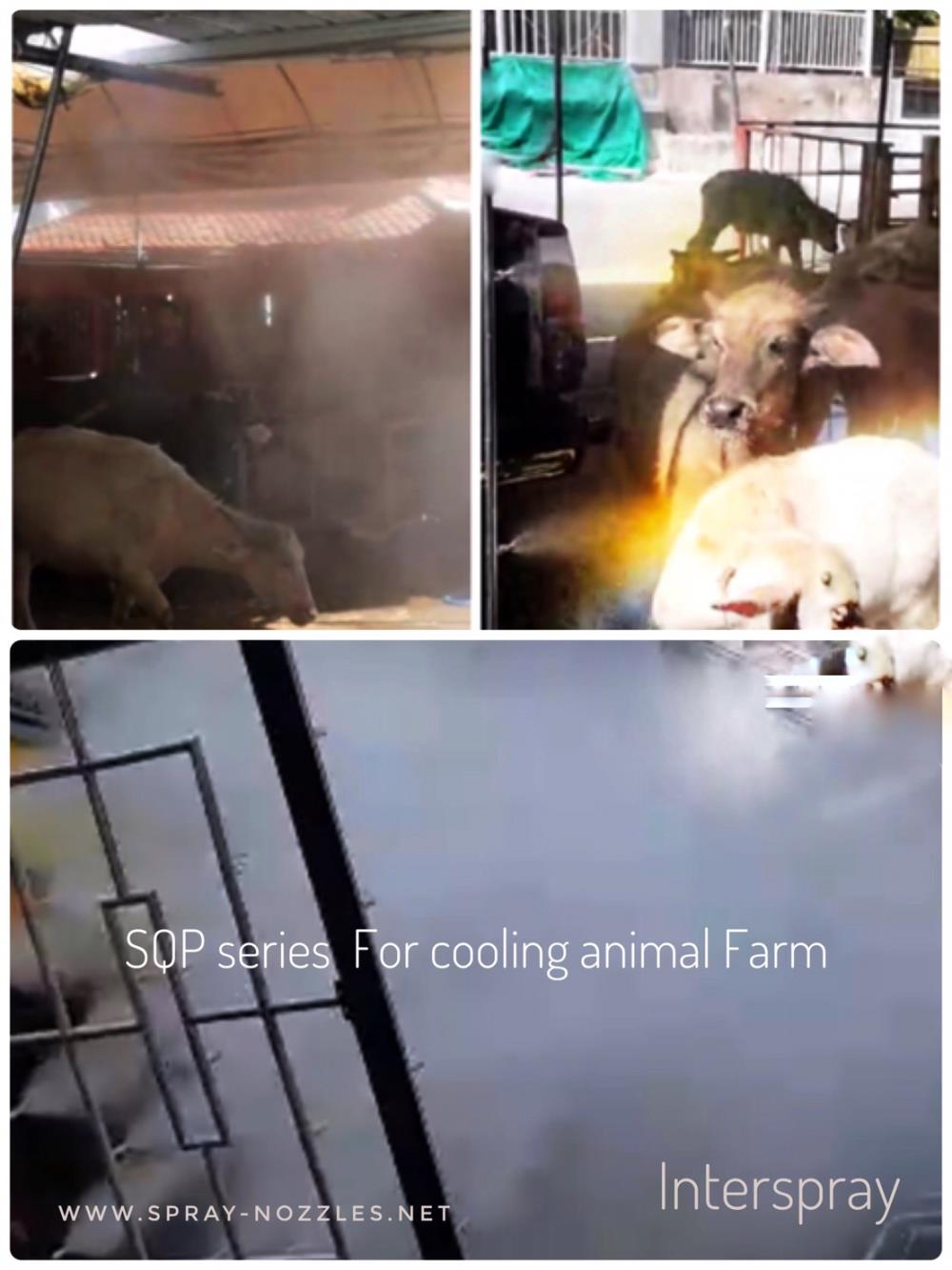 SQP SERIES FOR COOLING ANIMAL FARM